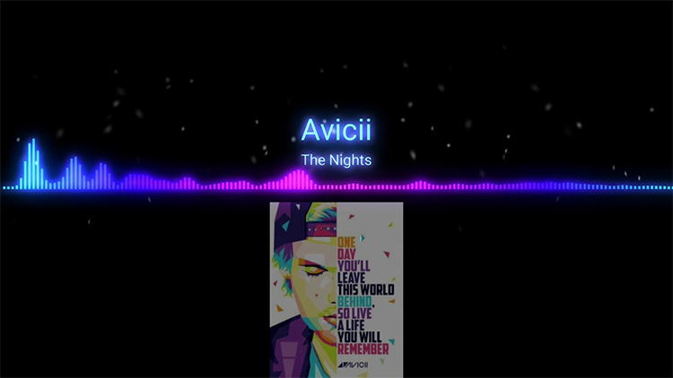Avicii The Night