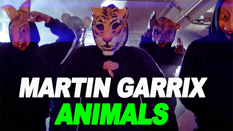 Martin Garrix Animals